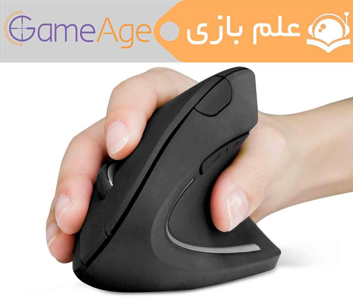 Mouse Ergonomic (1)